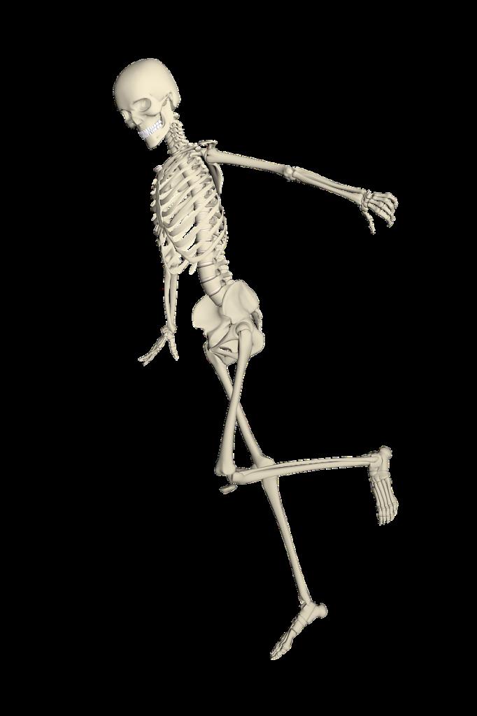 skeleton 1654866_1280